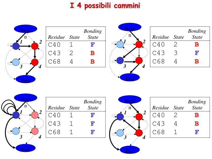 I 4 possibili cammini