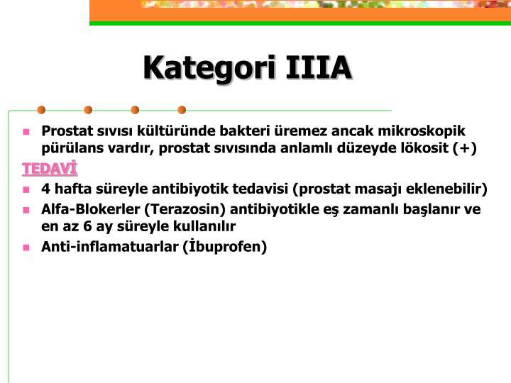 Kategori IIIA
