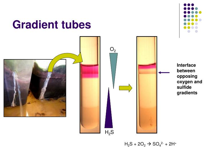 Gradient tubes
