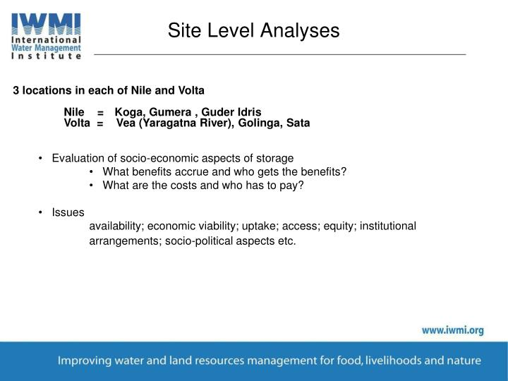 Site Level Analyses