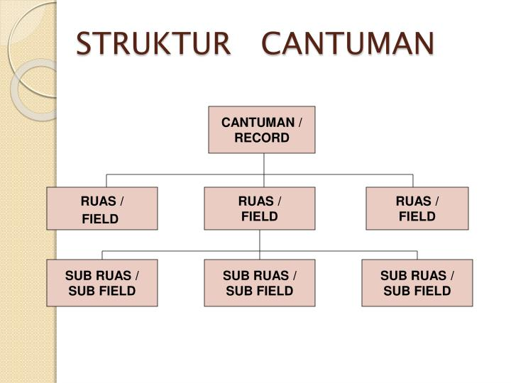 STRUKTUR   CANTUMAN