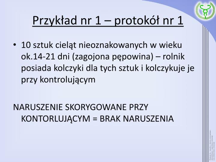 Przykład nr 1 – protokół nr 1