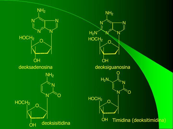 deoksadenosina