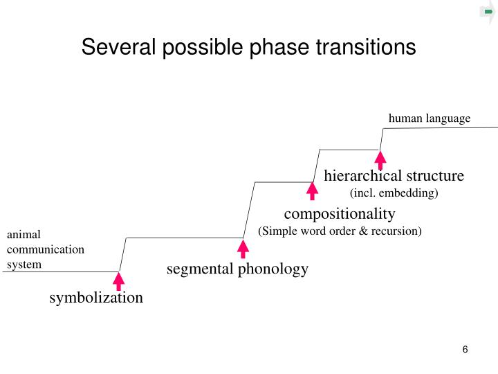 Several possible phase transitions