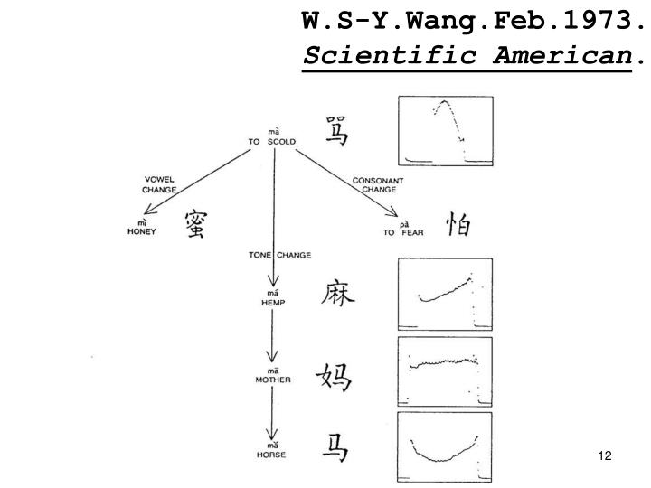 W.S-Y.Wang.Feb.1973.