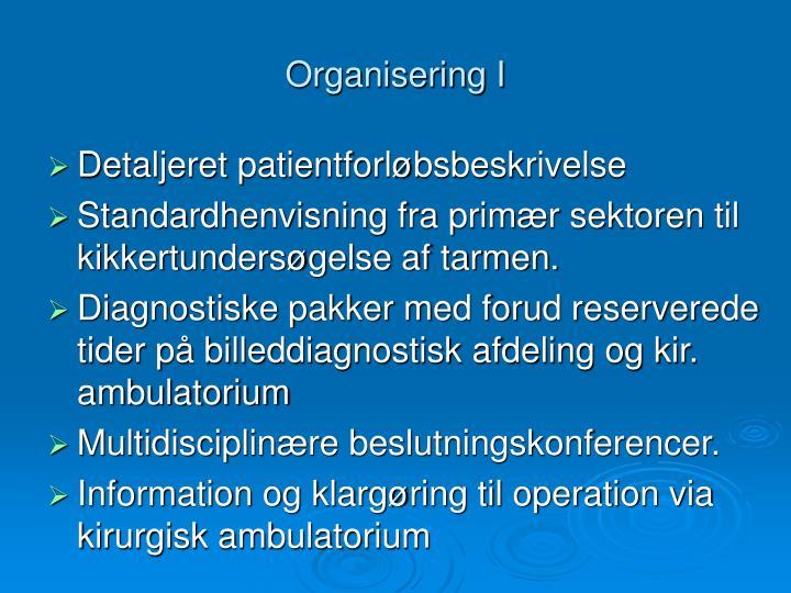Organisering I