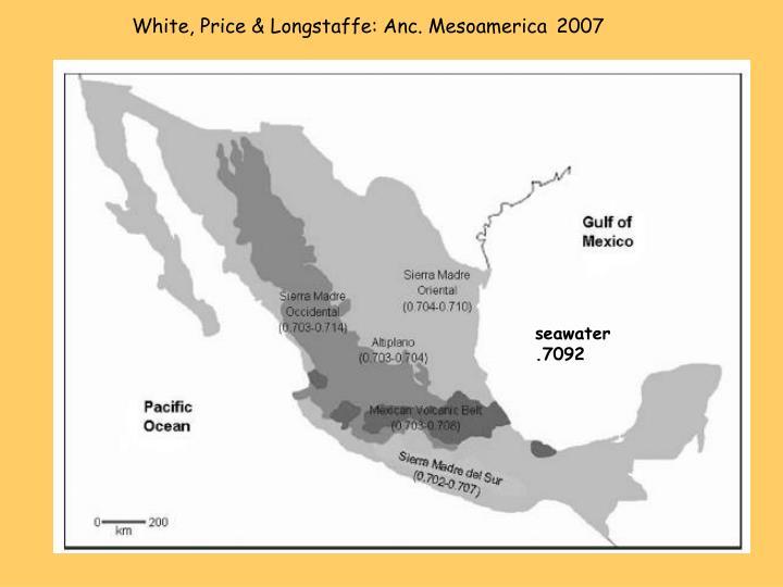White, Price & Longstaffe: Anc. Mesoamerica