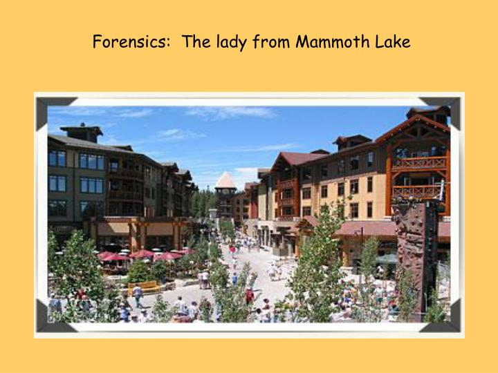 Forensics:  The lady from Mammoth Lake