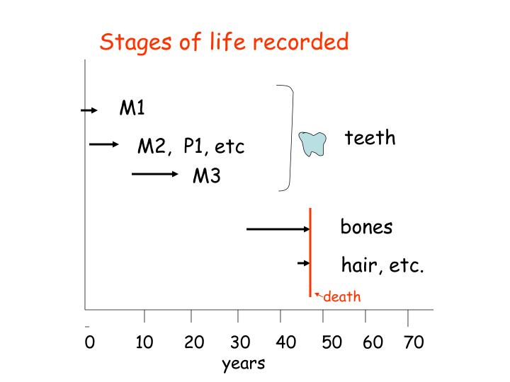 Stages of life recorded