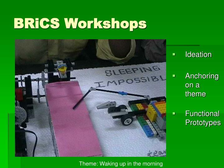 BRiCS Workshops