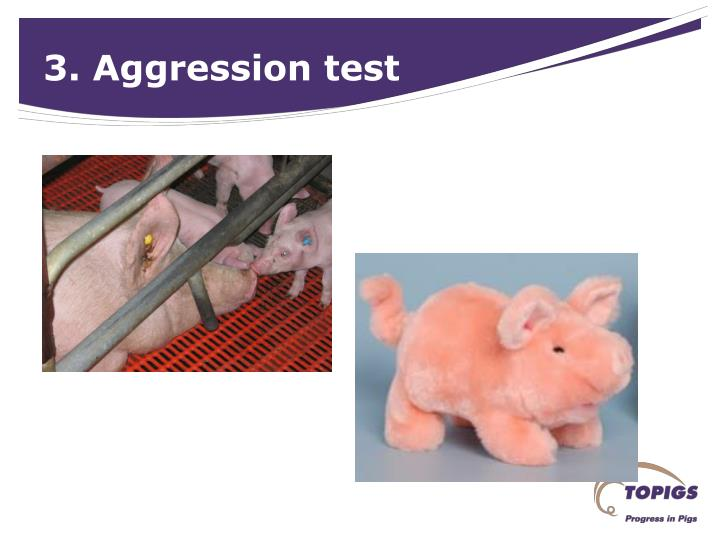 3. Aggression test