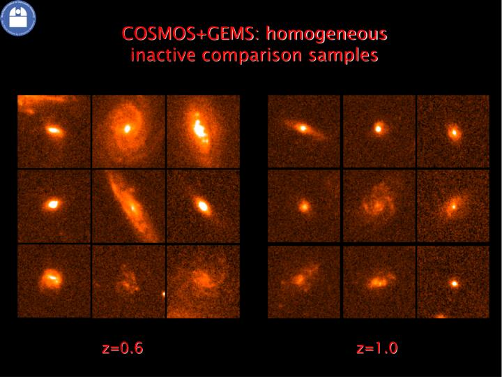 COSMOS+GEMS: homogeneous inactive comparison samples