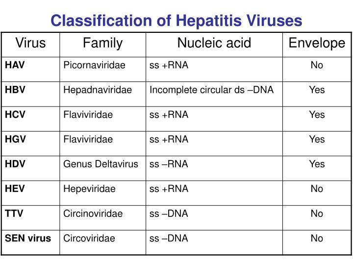 Classification of Hepatitis Viruses