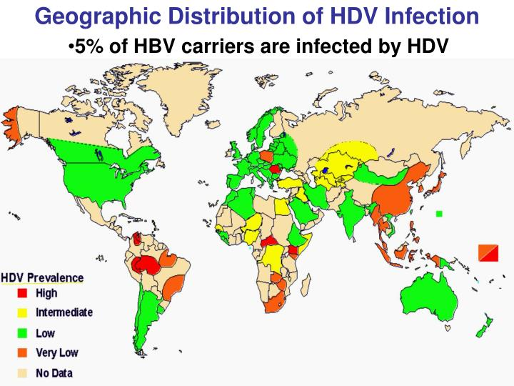 Geographic Distribution of HDV Infection