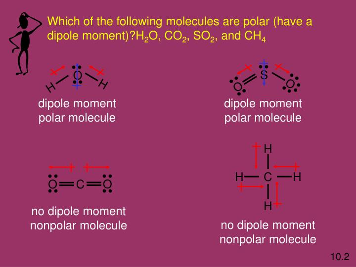 Which of the following molecules are polar (have a
