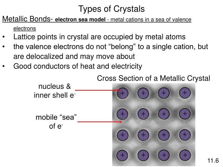 nucleus &