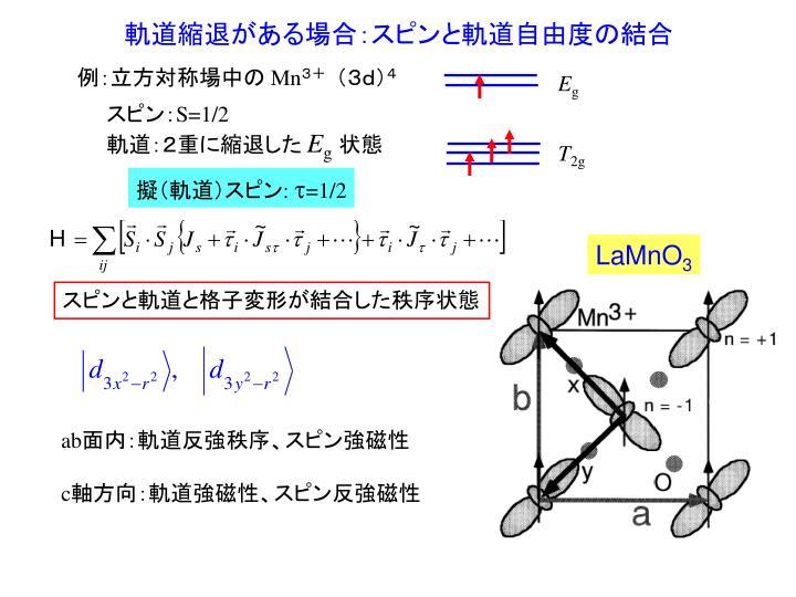 軌道縮退がある場合:スピンと軌道自由度の結合