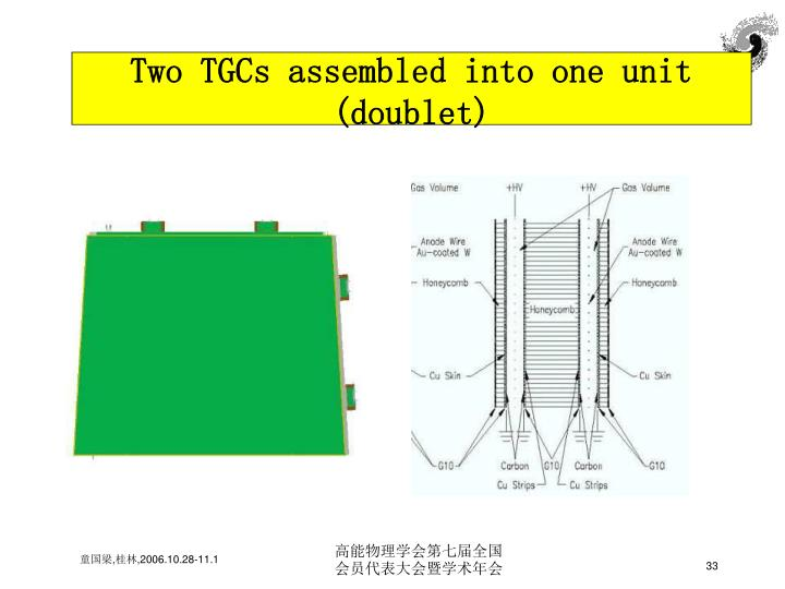 Two TGCs assembled into one unit (doublet)