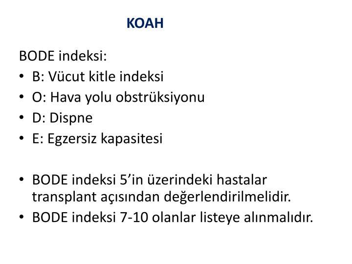 BODE indeksi: