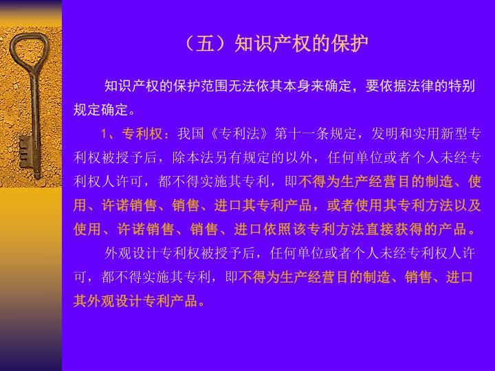 (五)知识产权的保护