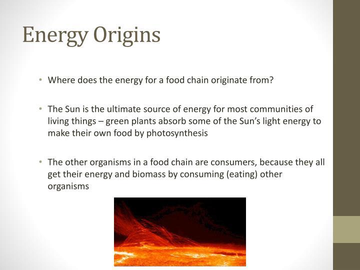 Energy Origins