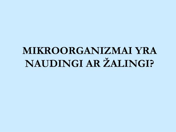 MIKROORGANIZMAI YRA