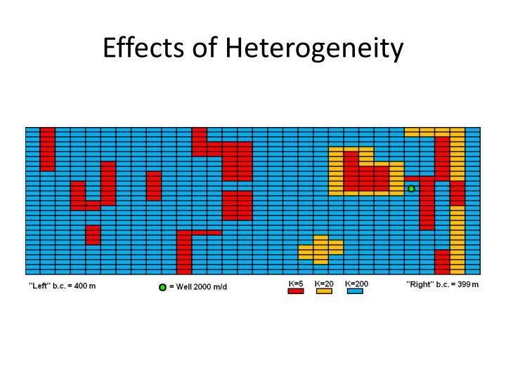 Effects of Heterogeneity