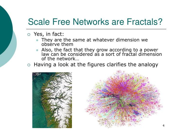 Scale Free Networks are Fractals?