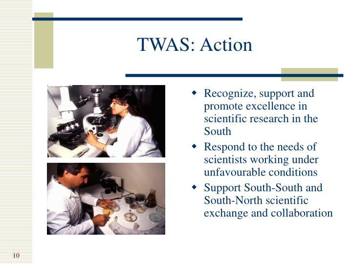TWAS: Action