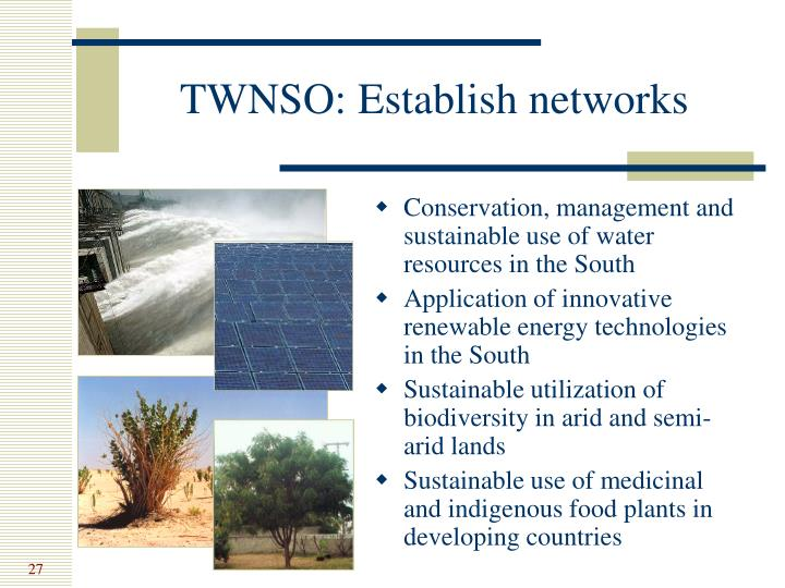 TWNSO: Establish networks
