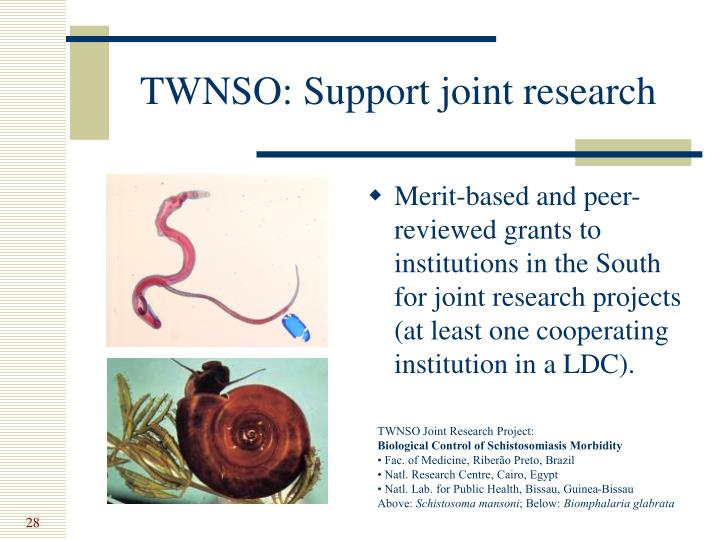 TWNSO: Support joint research