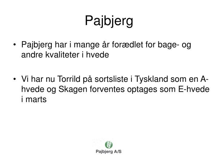 Pajbjerg