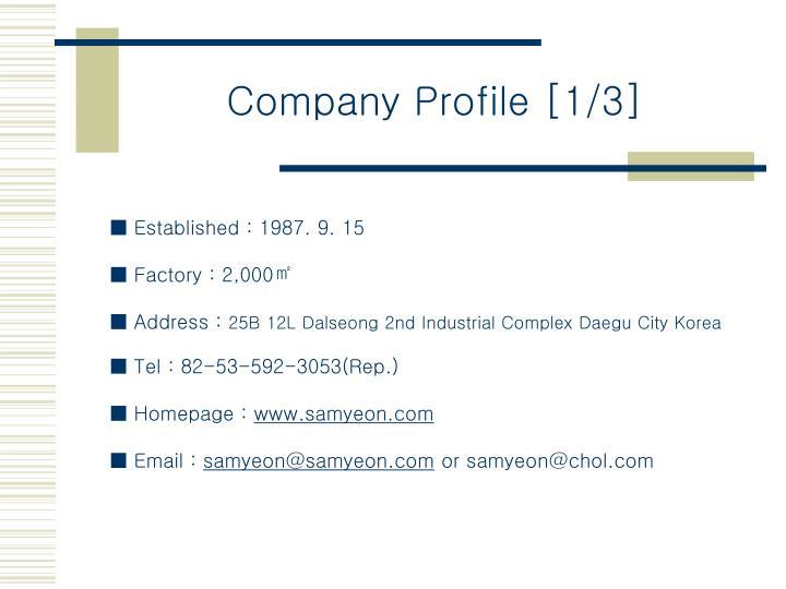 Company Profile [1/3]
