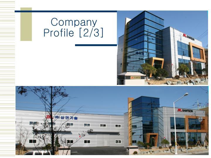 Company Profile [2/3]
