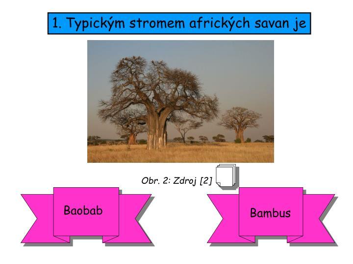 Typickým stromem afrických savan je