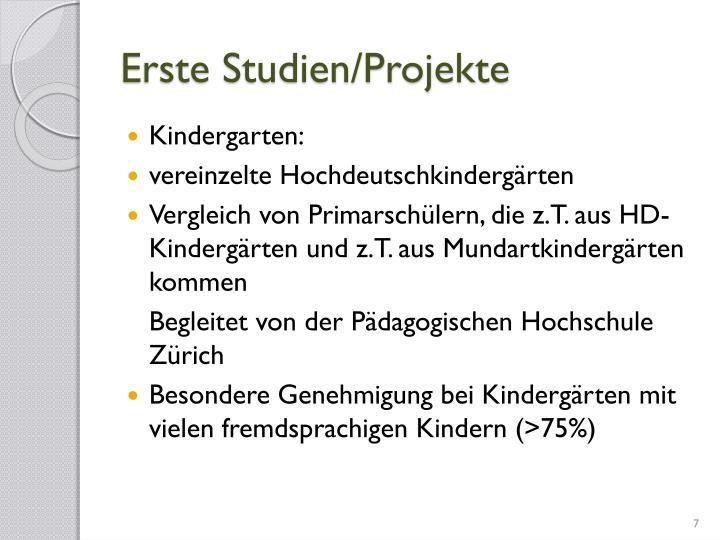 Erste Studien/Projekte