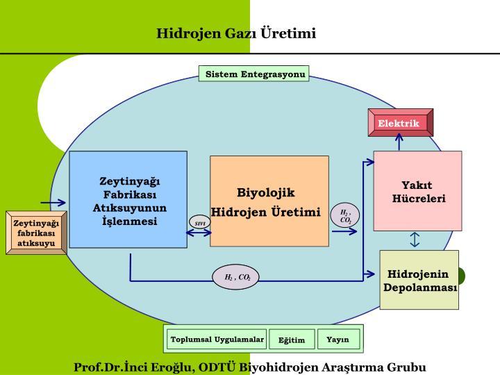 Sistem Entegrasyonu