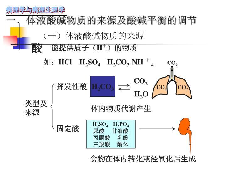 (一)体液酸碱物质的来源
