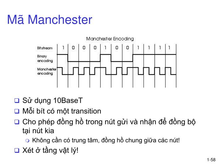 Mã Manchester