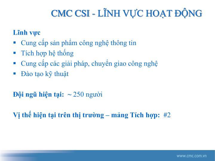 CMC CSI - LĨNH VỰC HOẠT ĐỘNG
