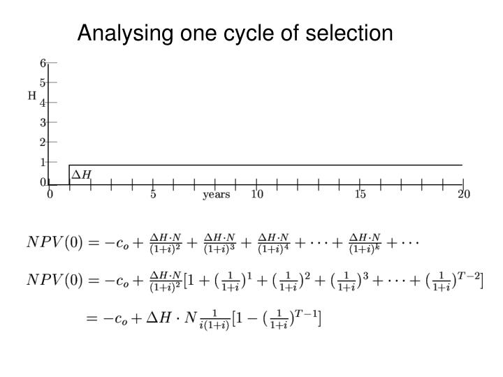 Analysing one cycle of selection