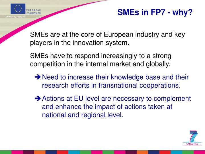 Smes in fp7 why