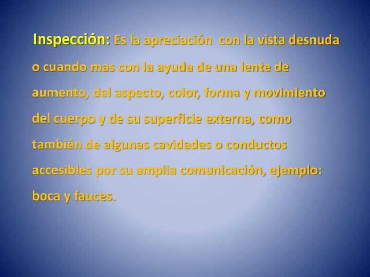 Inspección: