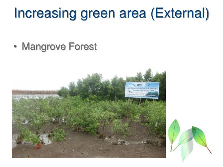 Increasing green area (External)