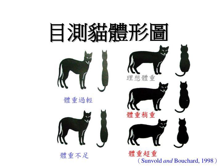 目測貓體形圖