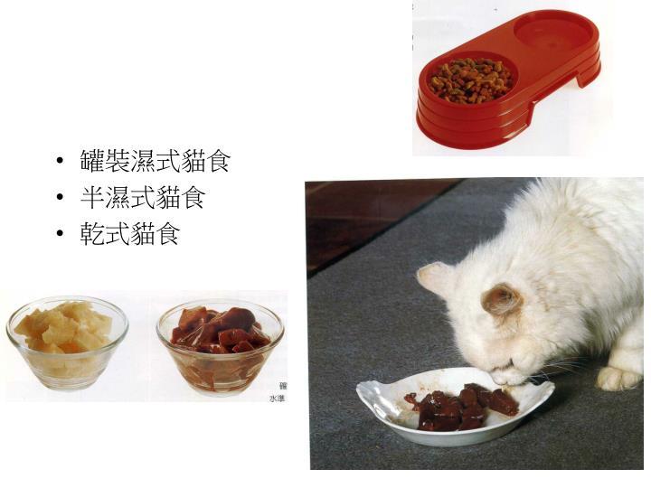 罐裝濕式貓食