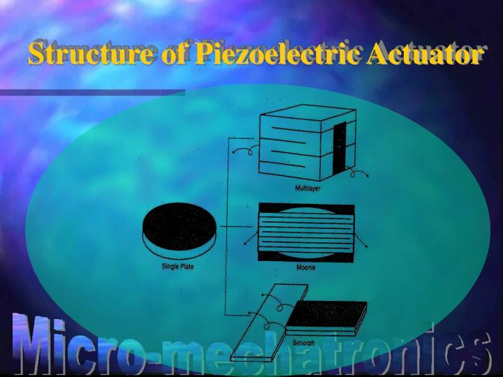 Structure of Piezoelectric Actuator