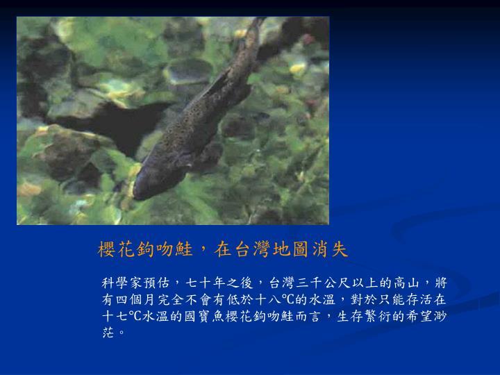 櫻花鉤吻鮭,在台灣地圖消失