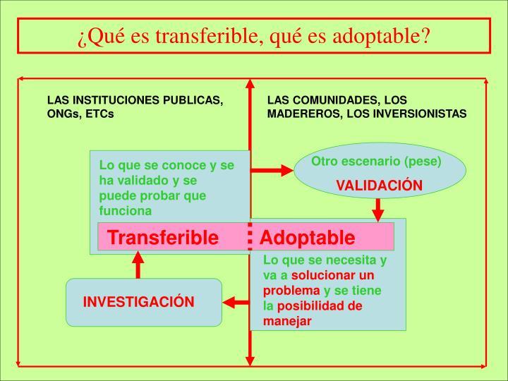 ¿Qué es transferible, qué es adoptable?