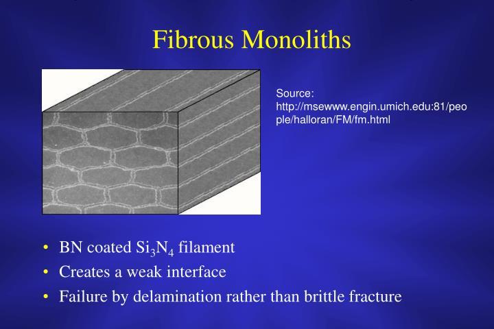Fibrous Monoliths